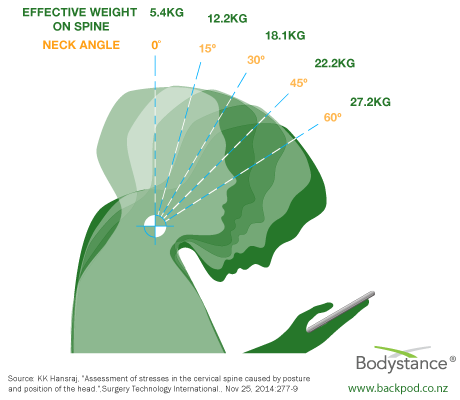 Effective weight of the head on the spine at different neck angles